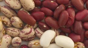 Frijoles y legumbres, benéficos para diabéticos