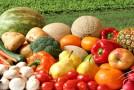 Conoce los alimentos que mejorarán tu concentración