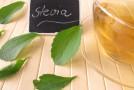 Conoce los beneficios que ofrece la stevia