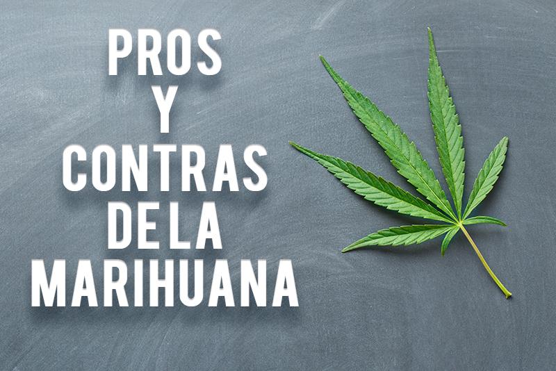 Pros y contras de la marihuana hoy saludable for Hormigon impreso pros y contras